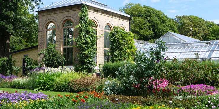 Upplev våren i Lunds Botaniska trädgård