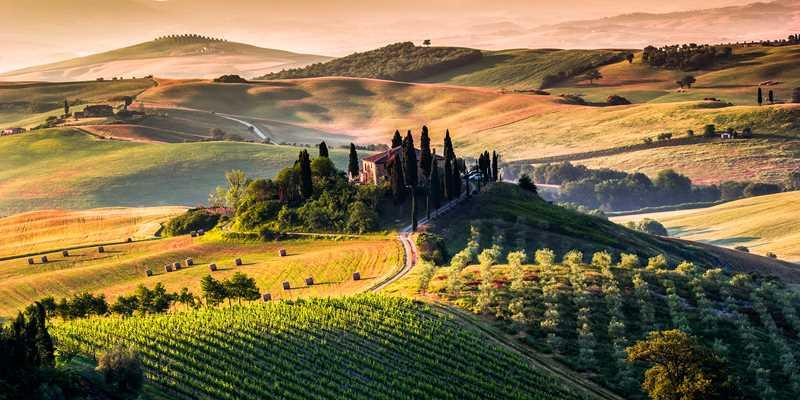 Vinresa Toscana och Piemonte