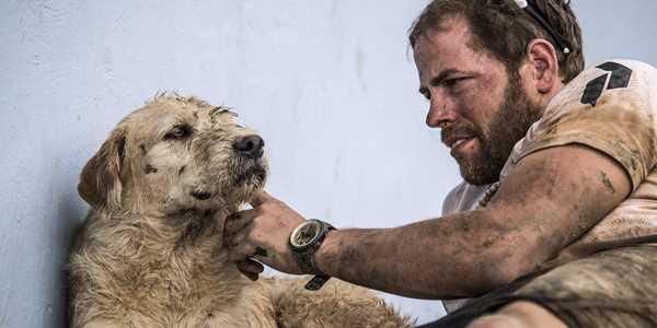 Gatuhunden Arthur förändrade mitt liv
