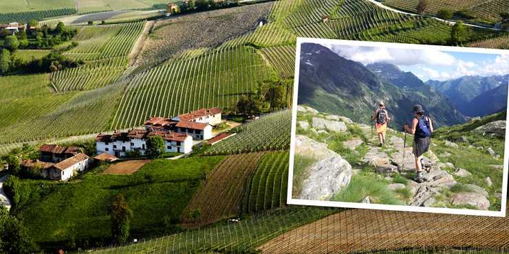 Vandring och Vin i Piemonte
