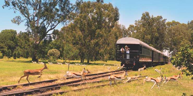 Rovos Rail och Sydafrika 10 dagar